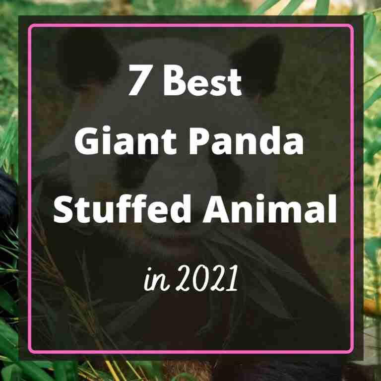 Best Giant Panda Stuffed Animal