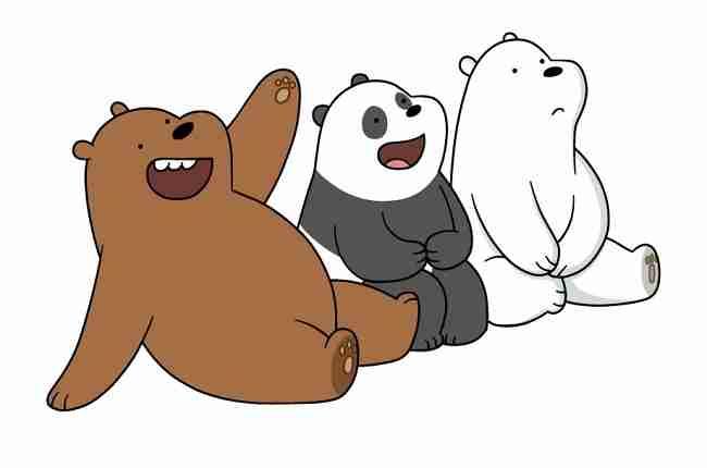 panda and bear similarities