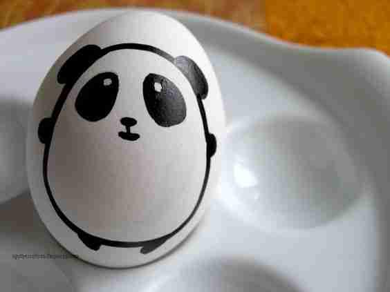 Why Don't Giant Pandas Lay Eggs